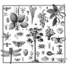 Victorian Nature Tile